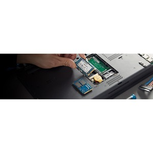 Kingston KC600 256 GB Solid State Drive - mSATA Internal - SATA (SATA/600) - Desktop PC, Notebook Device Supported - 150 T